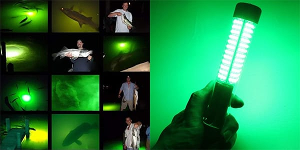 What to Consider When Choosing Underwater Fishing Lights?